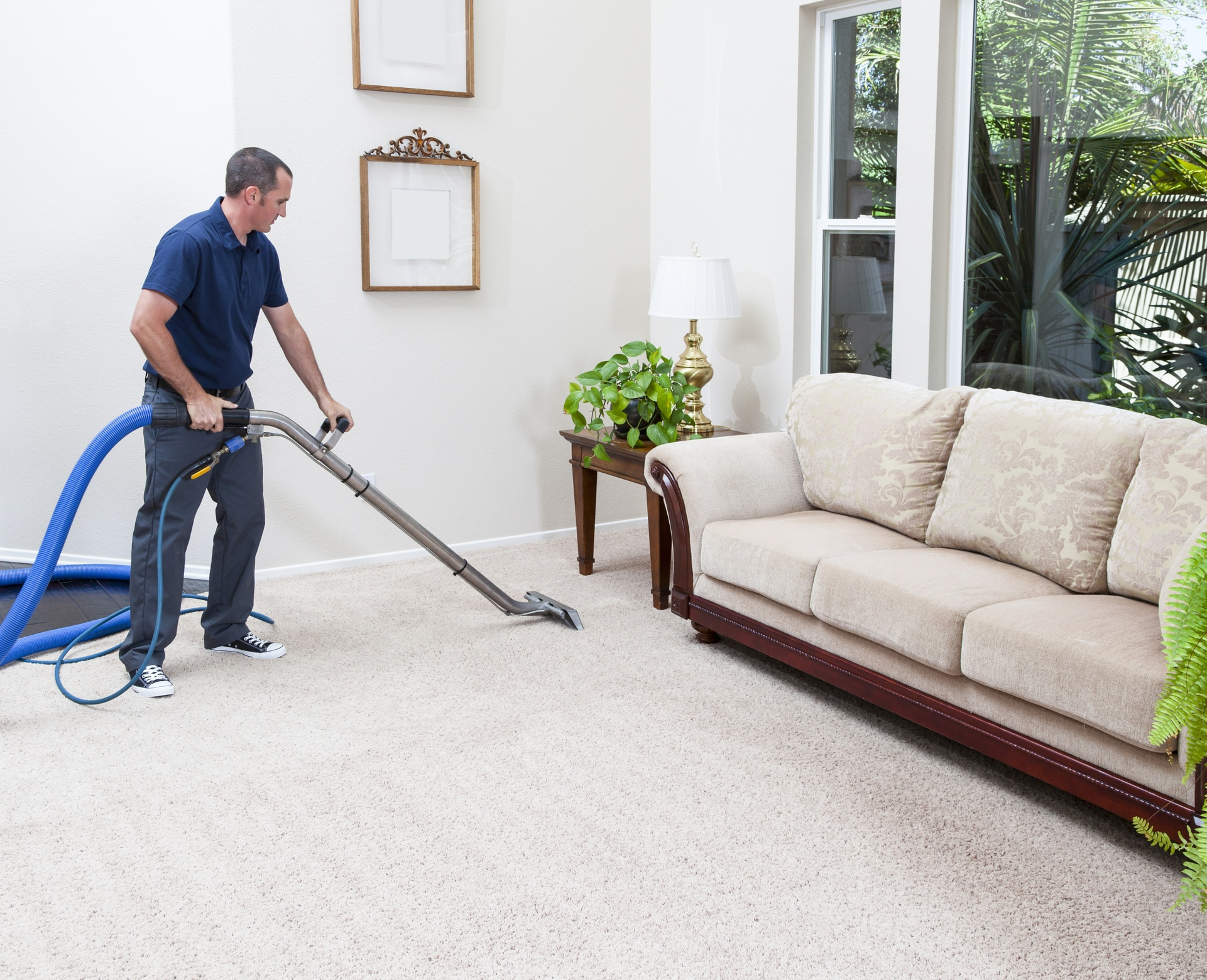 Carpet Cleaning Services Near Me Mccoy Janitorial Allentown Pa