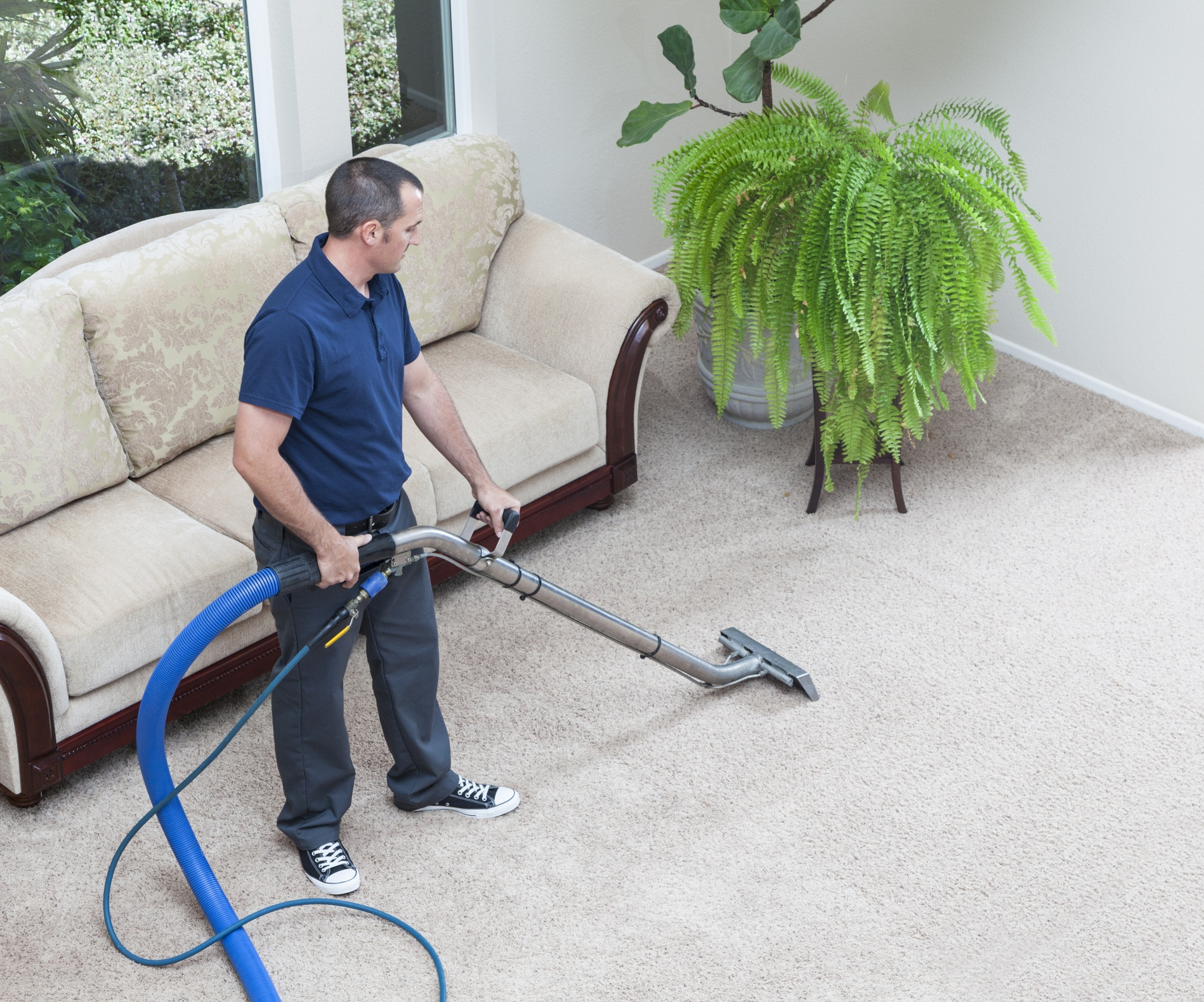 Carpet Cleaning Services Near Me Mccoy Janitorial